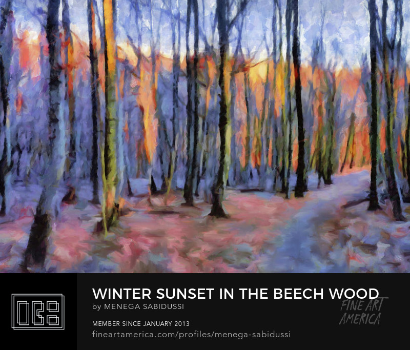 Winter Sunset In The Beech Wood Painterly Menega Sabidussi
