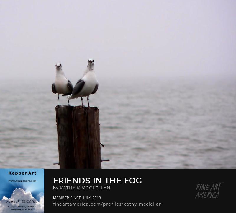Friends In The Fog by Kathy K. McClellan