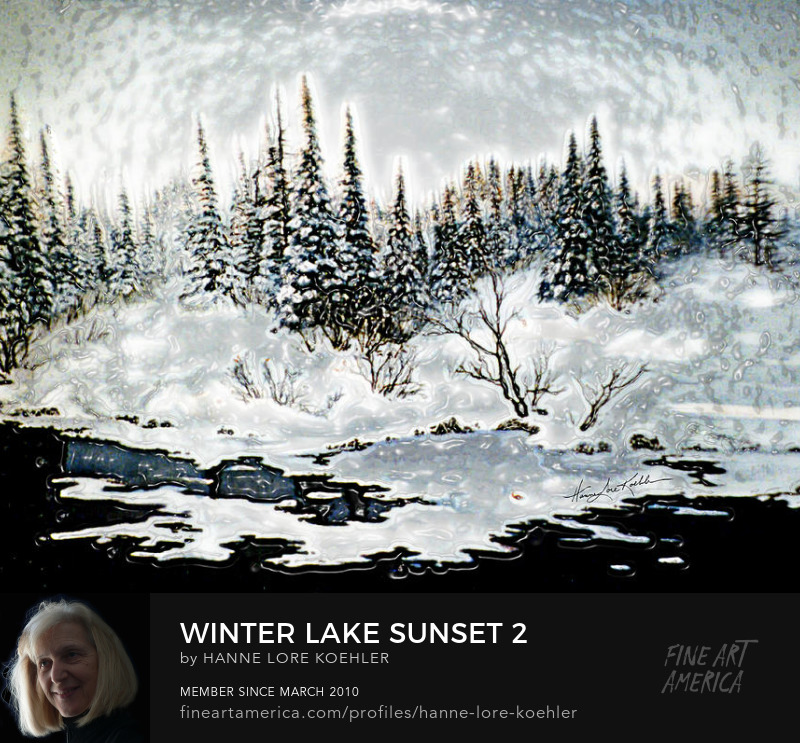 Sunset On Winter Evergreens Canvas Art Prints