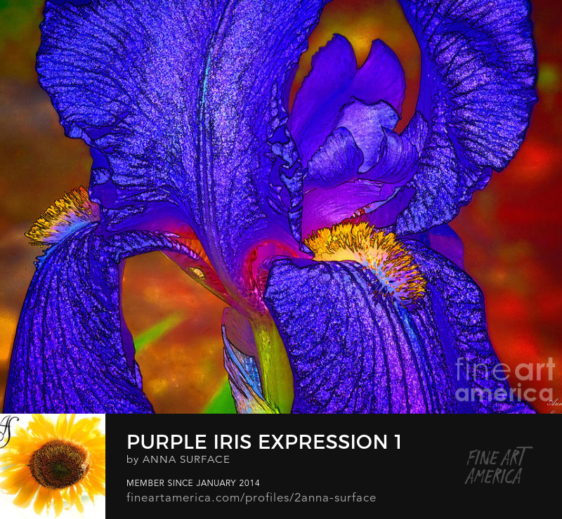 Purple Iris Expression 1