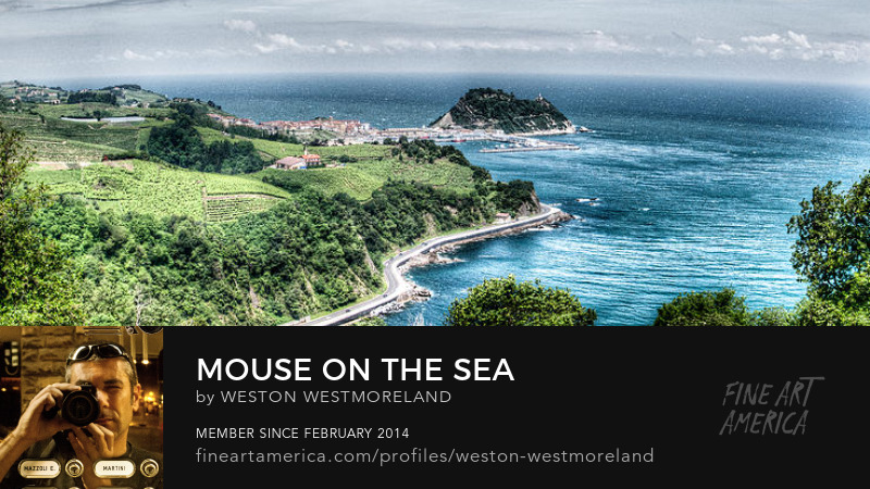 Mouse on the Sea - Weston Westmoreland