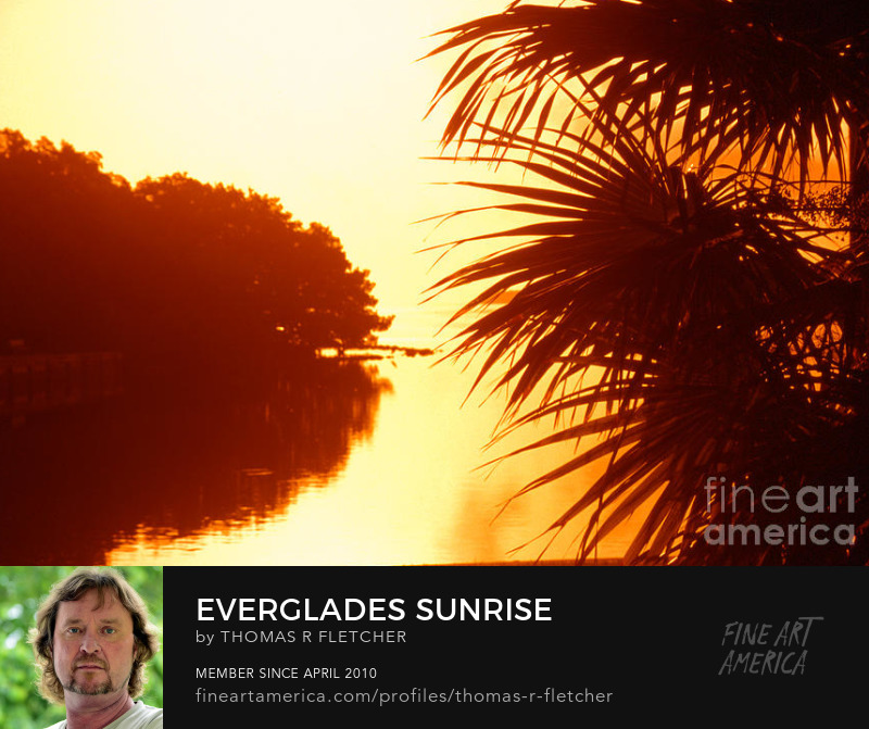 Photography Prints Sunrise, Everglades National Park, Florida