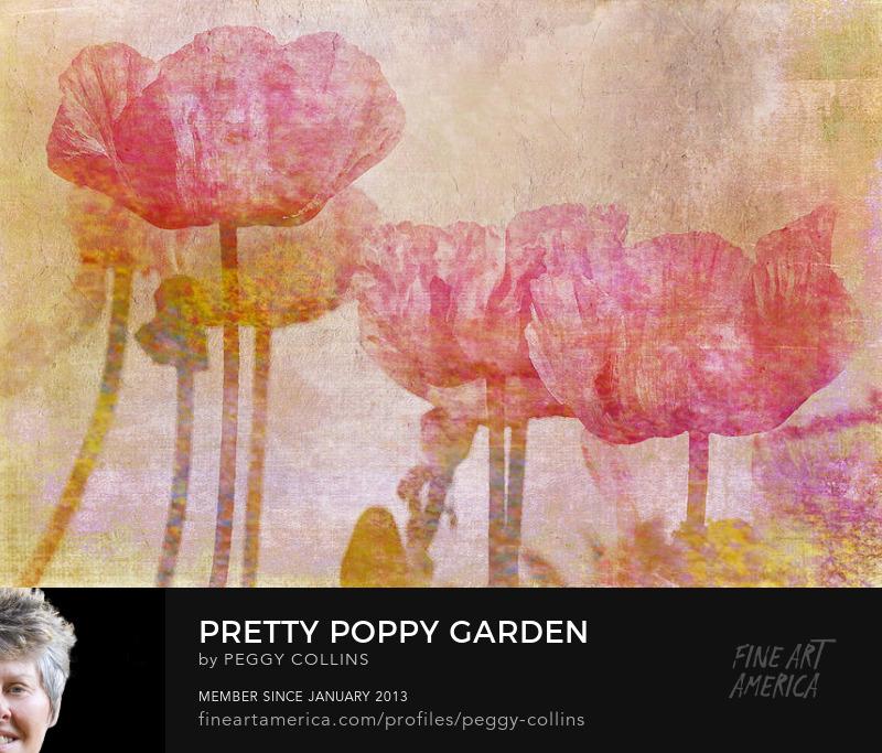poppy garden art by peggy collins