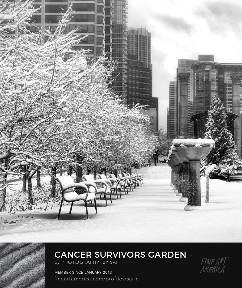 Cancer Survivors Garden Downtown Chicago