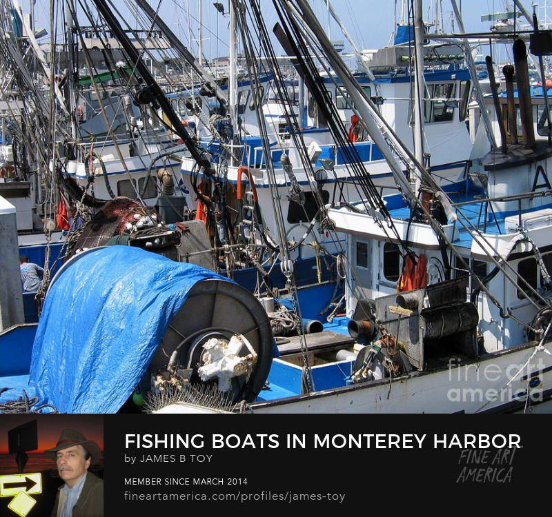 Fishing Boats in Monterey Harbor