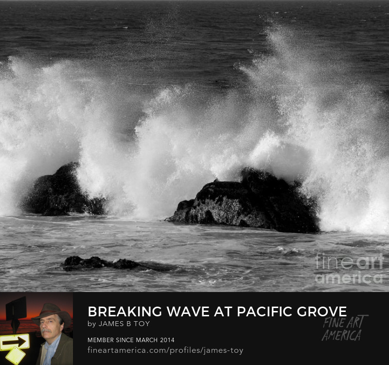 Breaking Wave at Pacific Grove