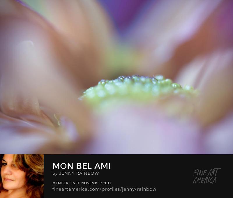 Mon Bel Ami by Jenny Rainbow