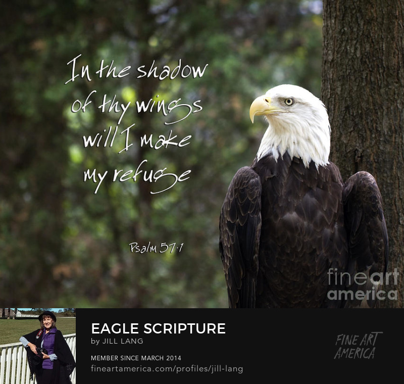 Scripture with Eagle
