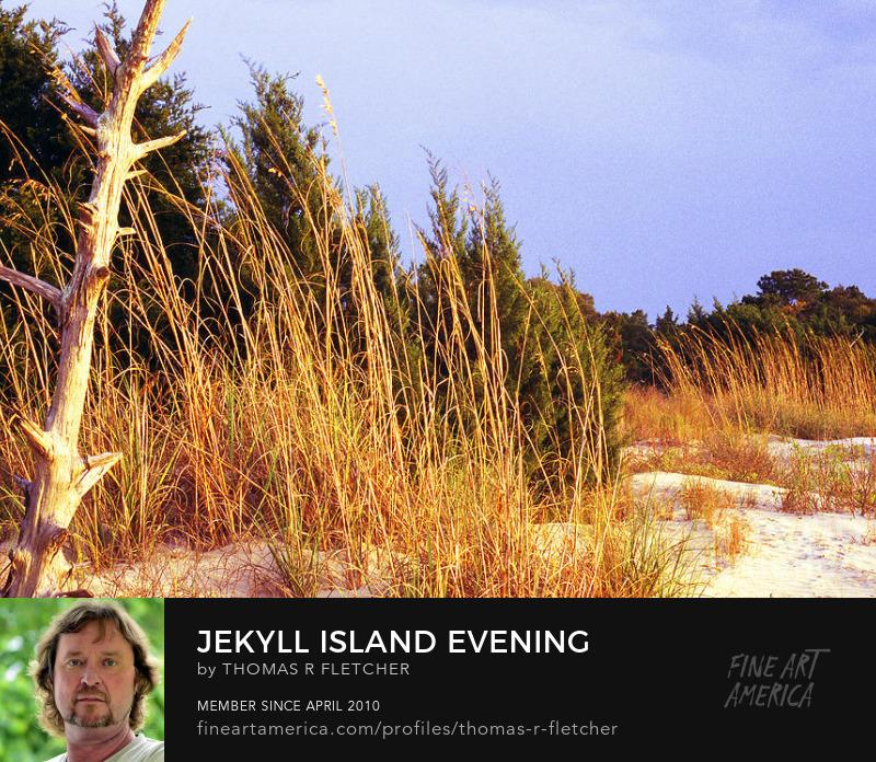 Sell Art Online Beach Park, Jekyll Island Georgia