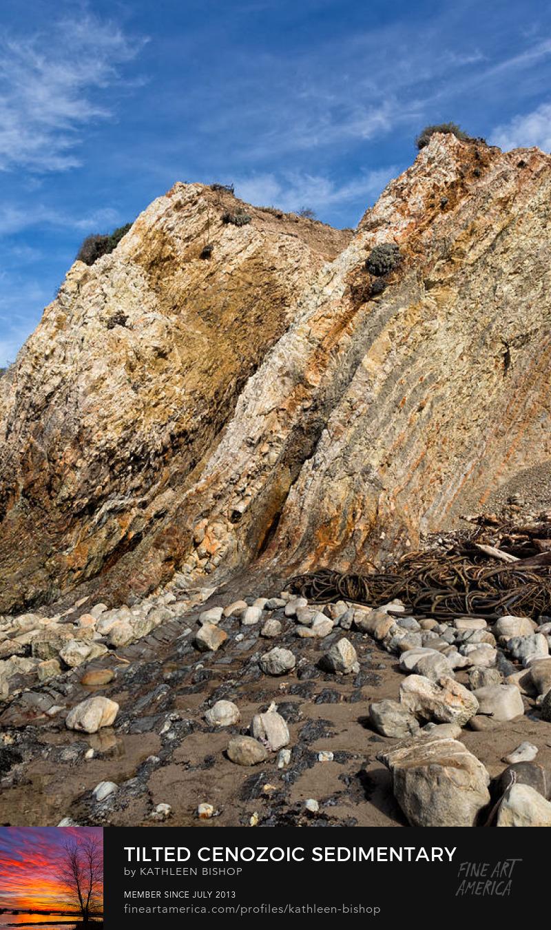 Tilted Sedimentary Scarps at Ross Creek Beach by Kathleen Bishop