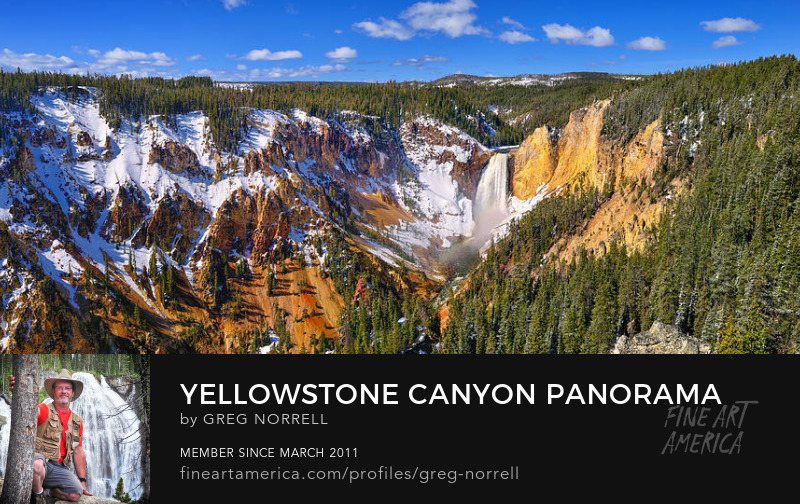 Grand Canyon of Yellowstone with Lower Falls