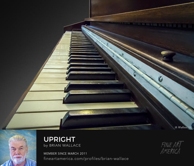 Upright by Brian Wallace