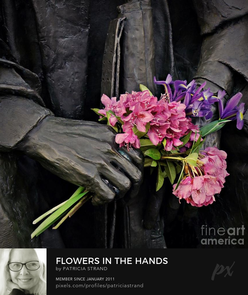 Flowers in the Hands by Patricia Strand