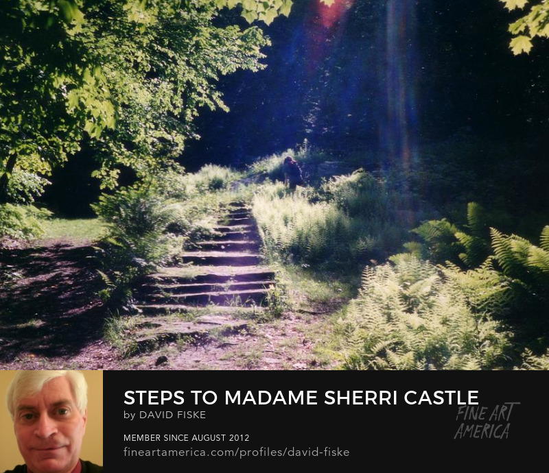 Photo, Steps to Madame Sherri