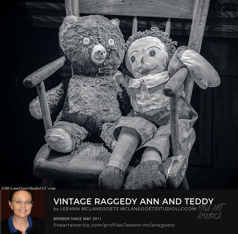 McLaneGoetzStudioLLC.com Vintage Raggedy Ann and Teddy Bear Washington Michigan