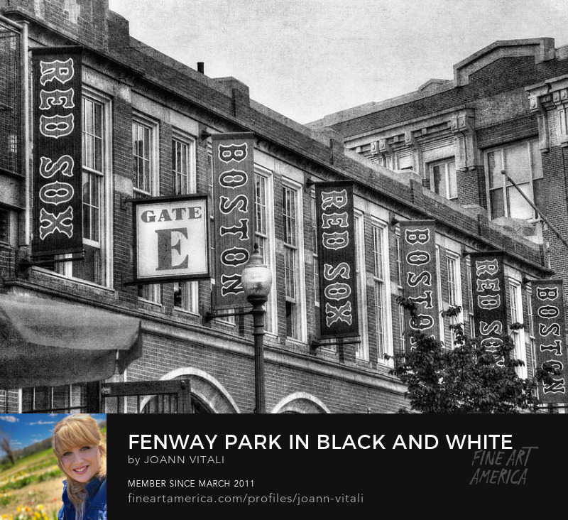 Fenway Park Prints