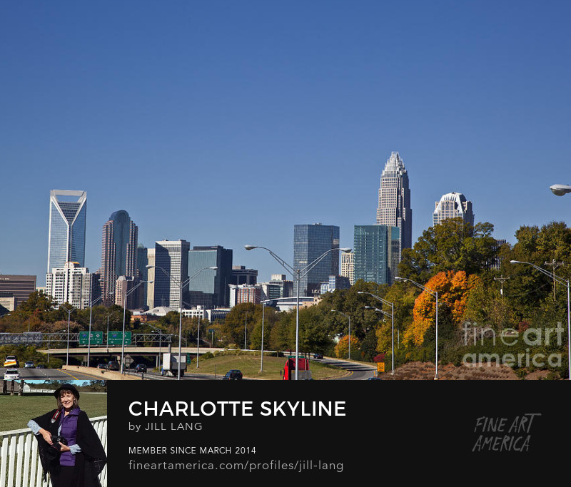 Charlotte skyline from Hawthorne Drive