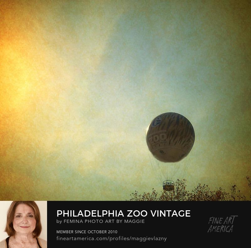 philadelphia zoo balloon ride