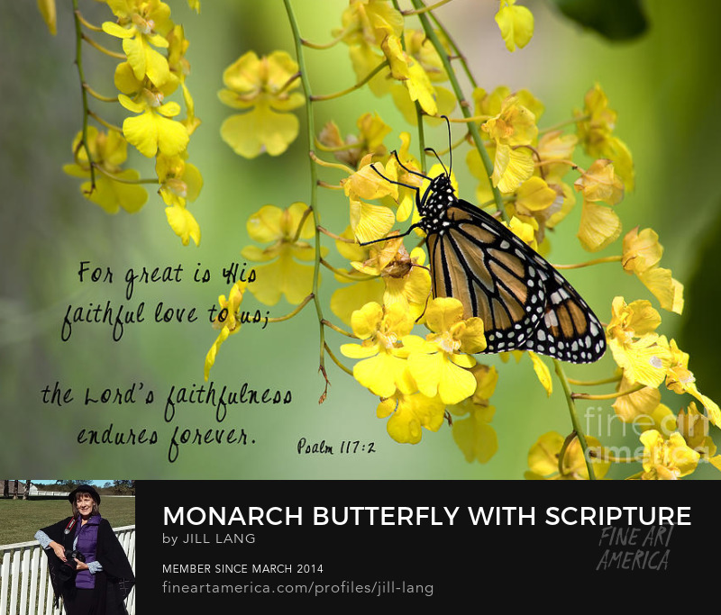 Butterfly Scripture