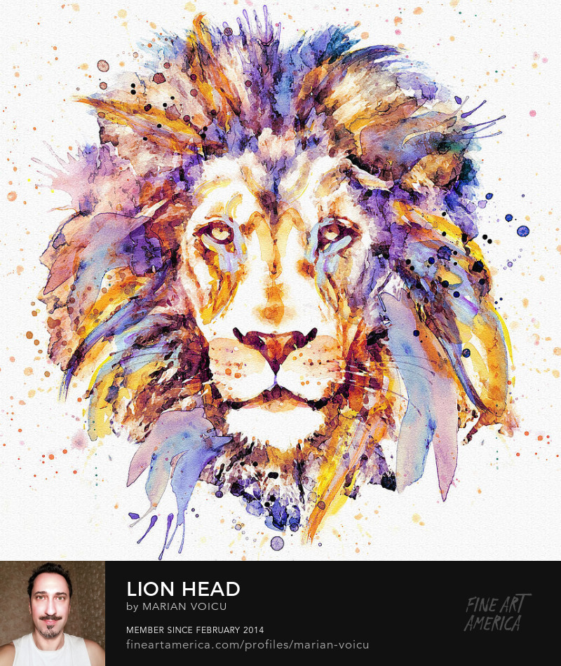 Watercolor painting of a lion head Art for sale