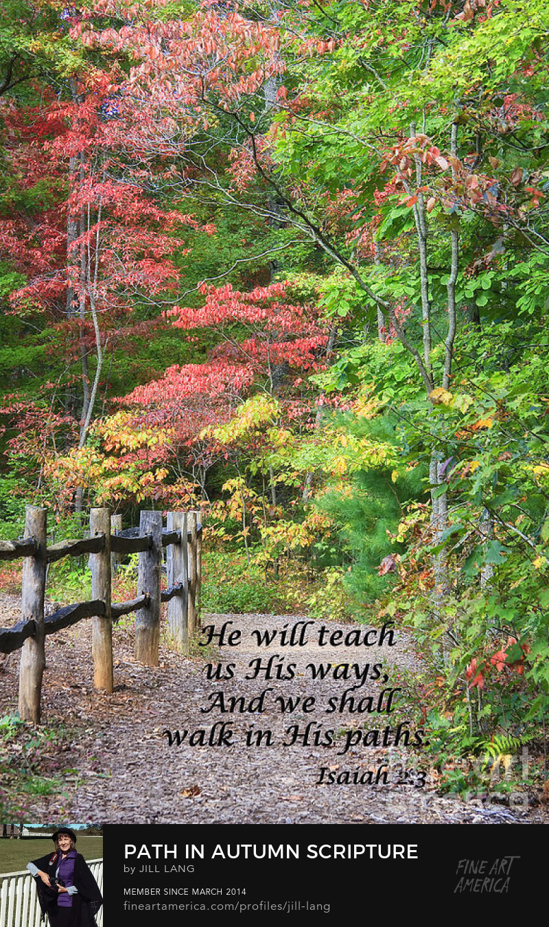 Walk in His Paths