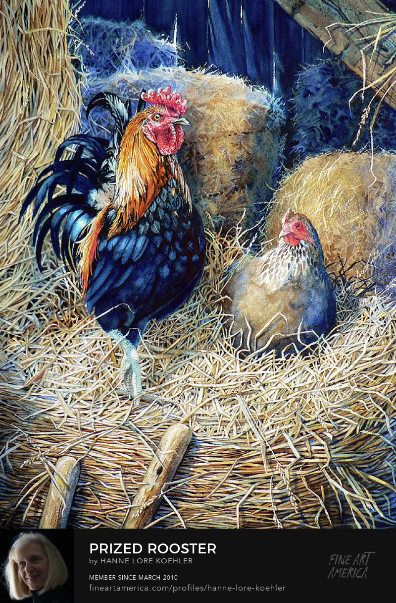 Rooster And Chicken Painting