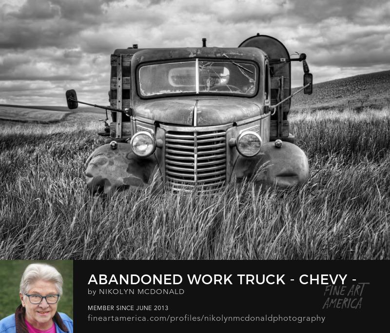 gmc farm truck in field black and white Nikolyn McDonald
