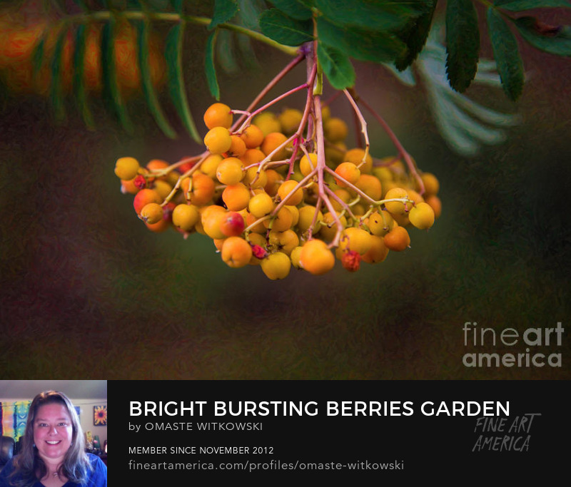 Bright Bursting Berries Garden Photography Art Prints