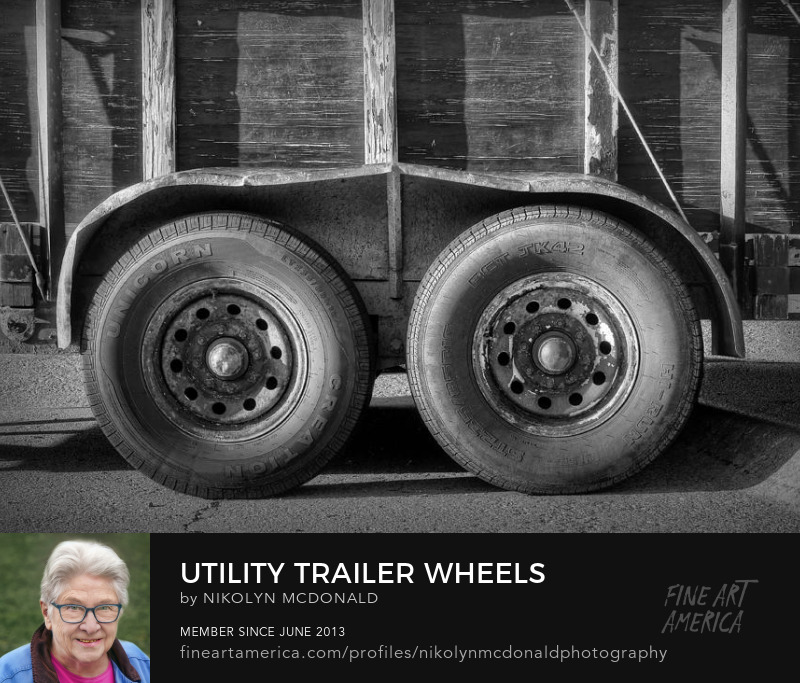 double axle trailer in black and white by nikolyn mcdonald