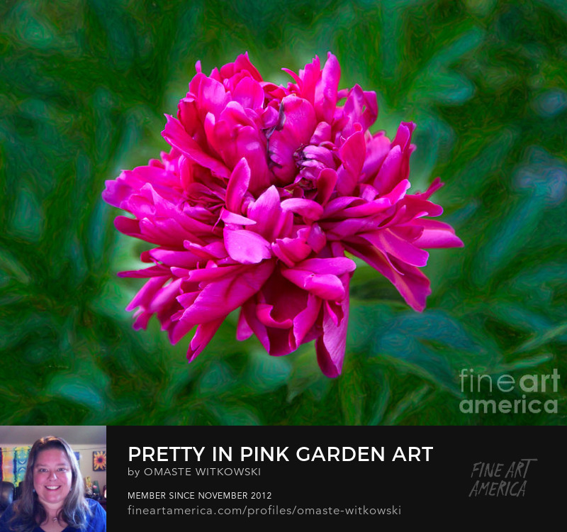 Pretty In Pink Garden Photography Prints