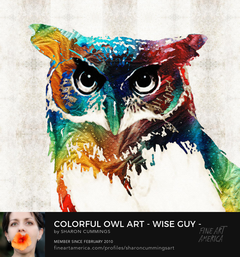 Colorful Owl Art Prints For Sale