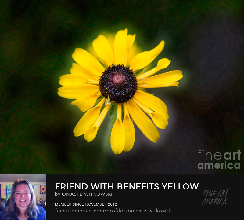 Friend With Benefits Yellow Flower Garden Photography Artwork Prints