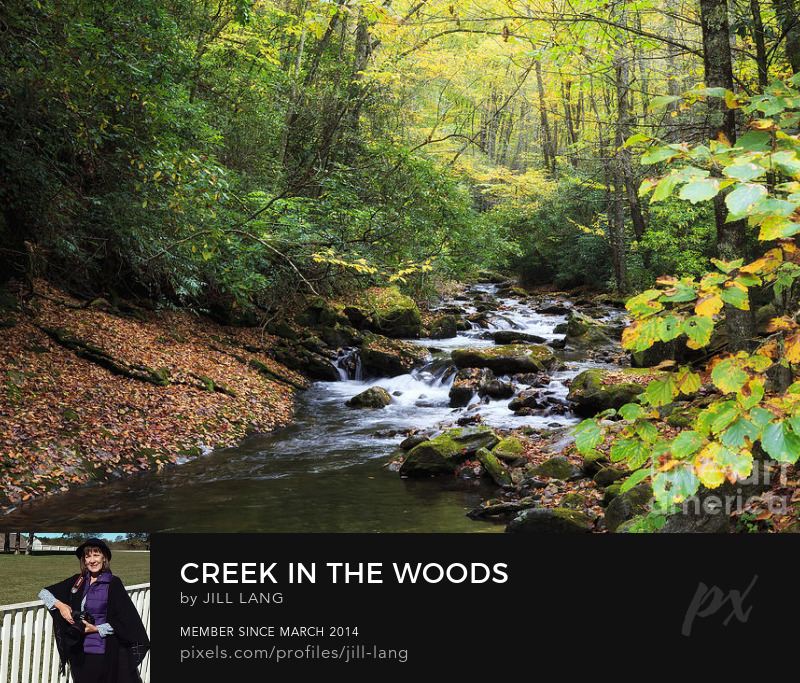 Courthouse Creek