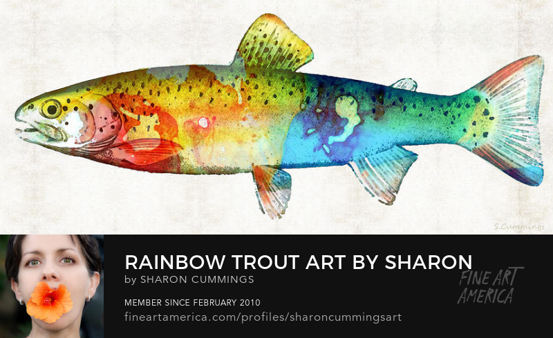 Rainbow Trout Art Prints Fish Paintings