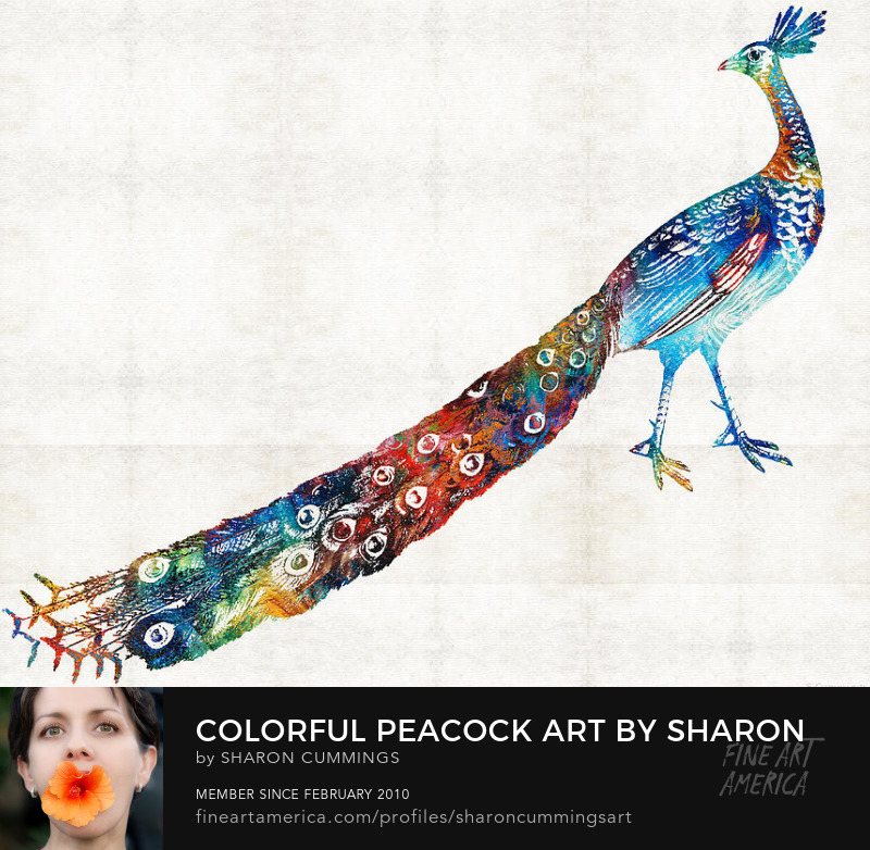 Peacock Art Prints Colorful Birds