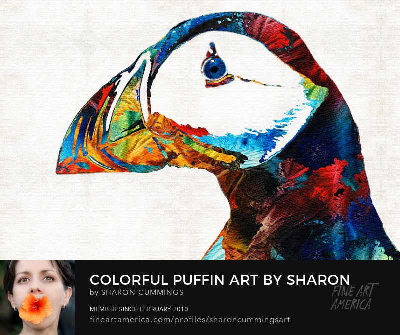 Colorful Puffin Bird Art Prints