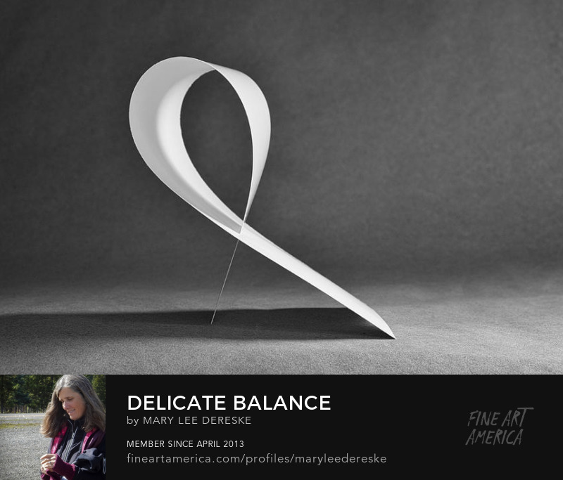 delicate-balance-mary-lee-dereske