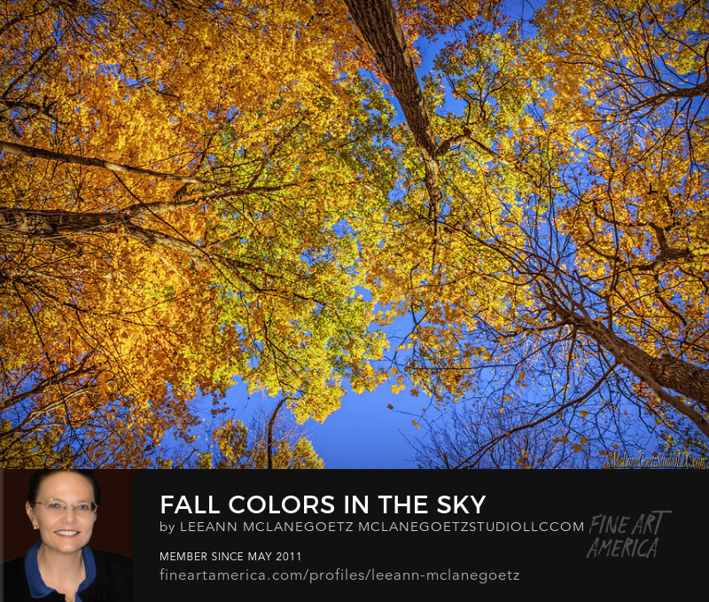 McLaneGoetzStudioLLC.com Print Fall Colors in the Sky Michigan