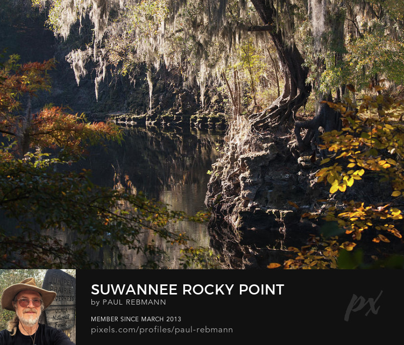 View online purchase options for Suwannee Rocky Point by Paul Rebmann