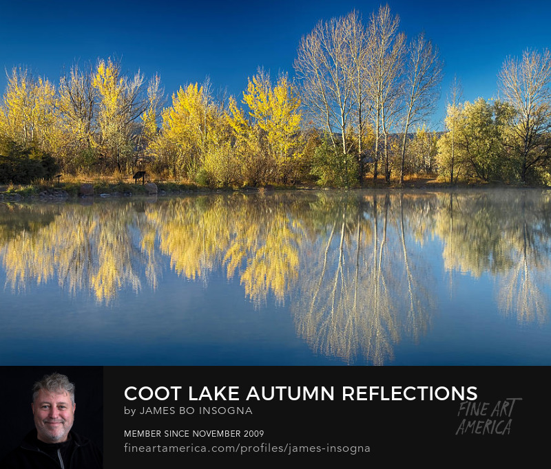 Coot Lake Autumn Reflections Photography Prints