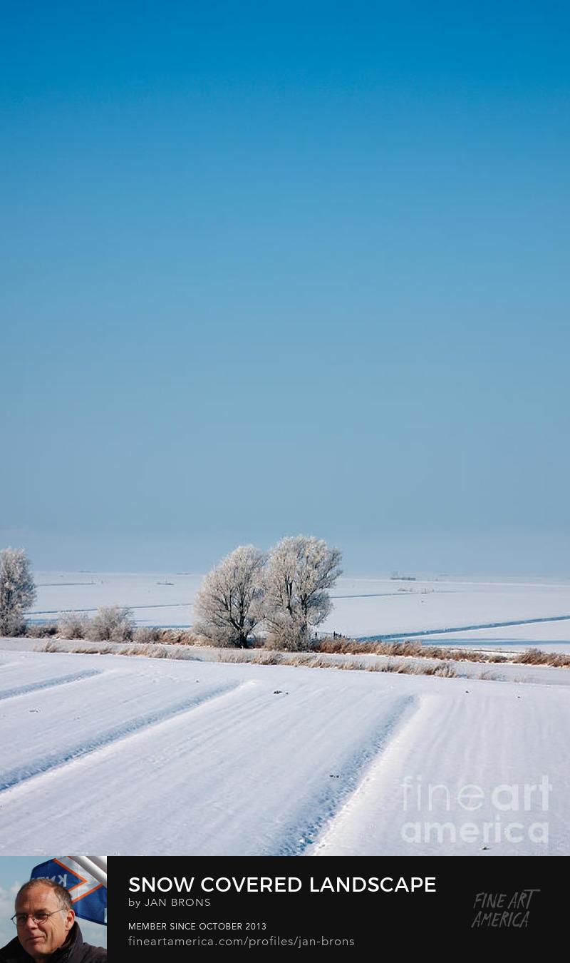 Snow covered landscape - Art Prints
