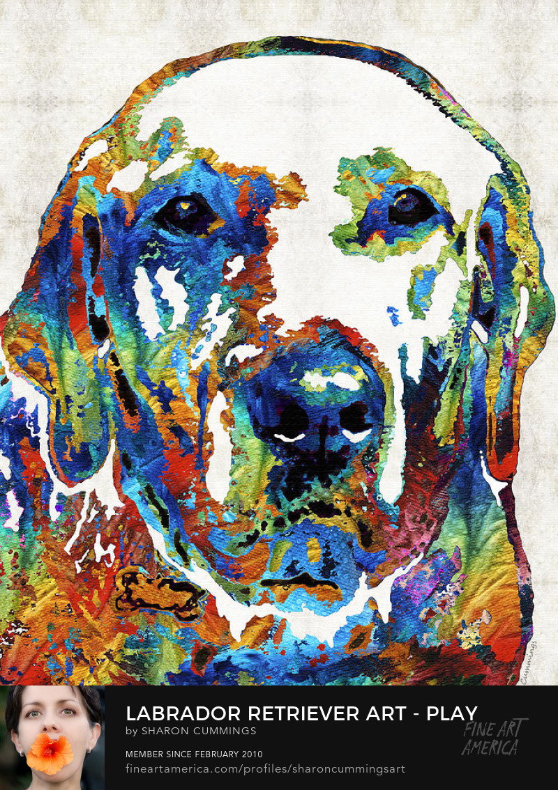 Labrador Retriever Art Prints Labs