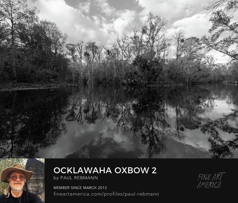 View online purchase options for Ocklawaha Oxbow #2 by Paul Rebmann