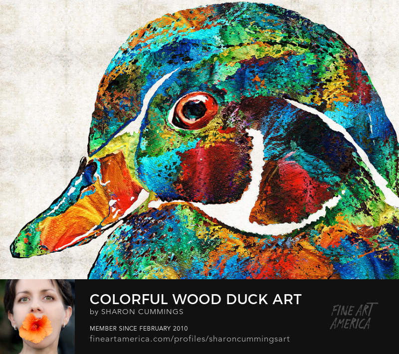Colorful Wood Duck Art Prints