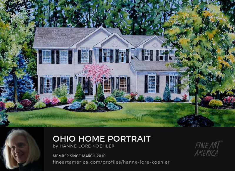 Ohio House Portrait From Google Street View