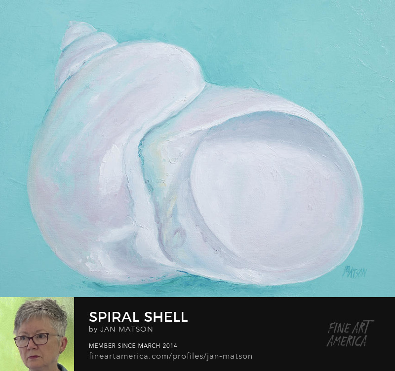 Spiral shell painting on a soft turquoise painted background.