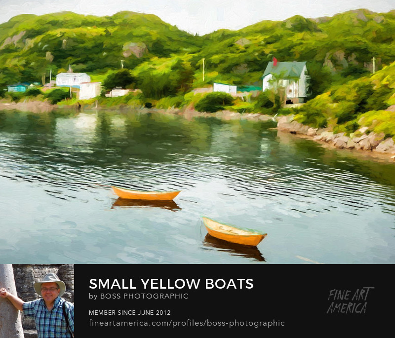 Yellow Boats Newfoundland