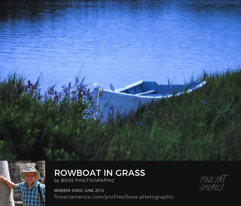 Rowboat in Grass