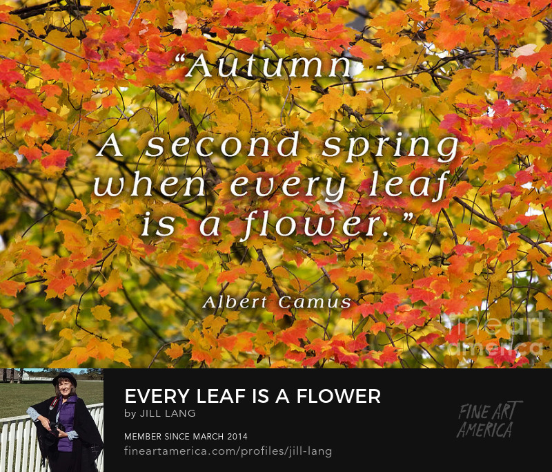 Albert Camus Autumn Quote