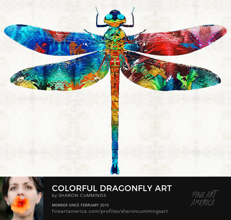 Colorful Dragonfly Art Prints